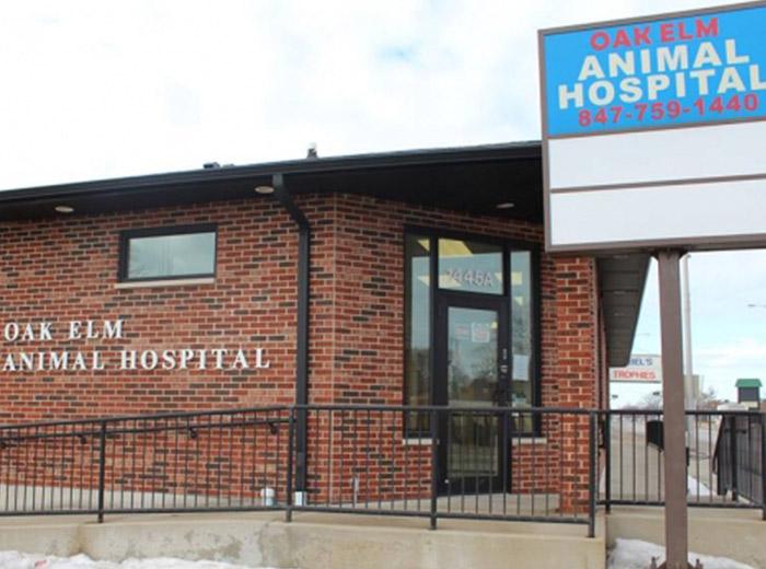 about-oak-elm-animal-hospital